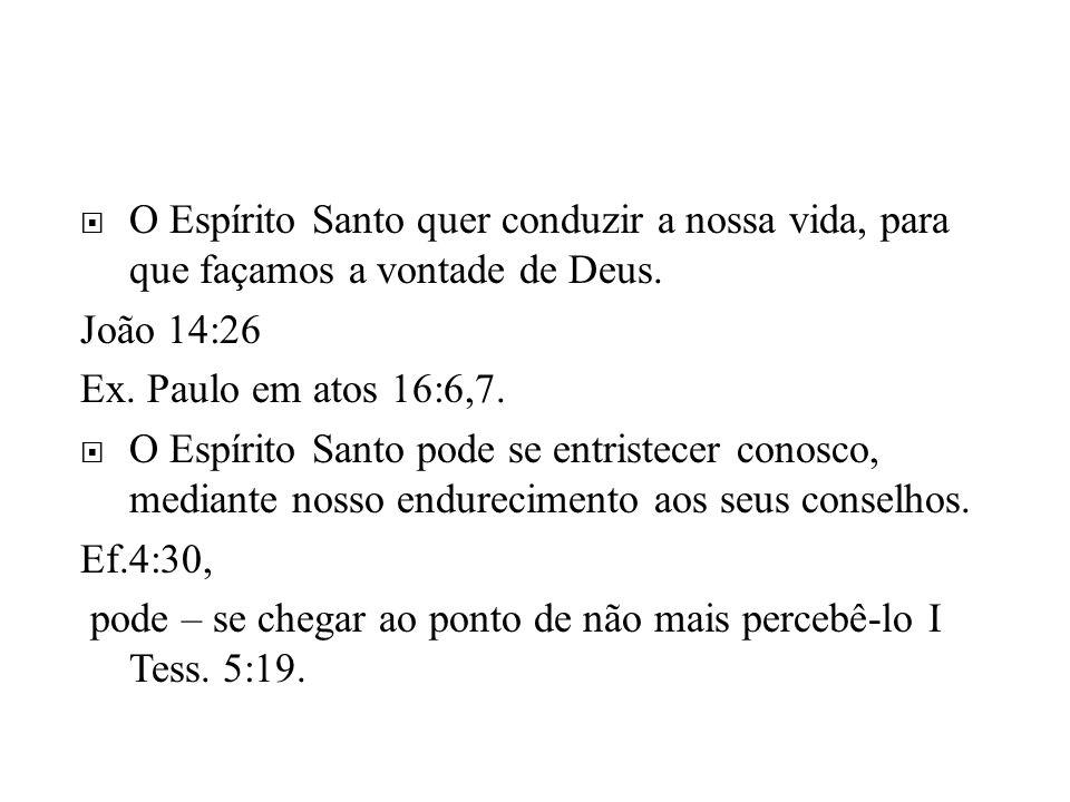 O Espírito Santo quer conduzir a nossa vida, para que façamos a vontade de Deus.