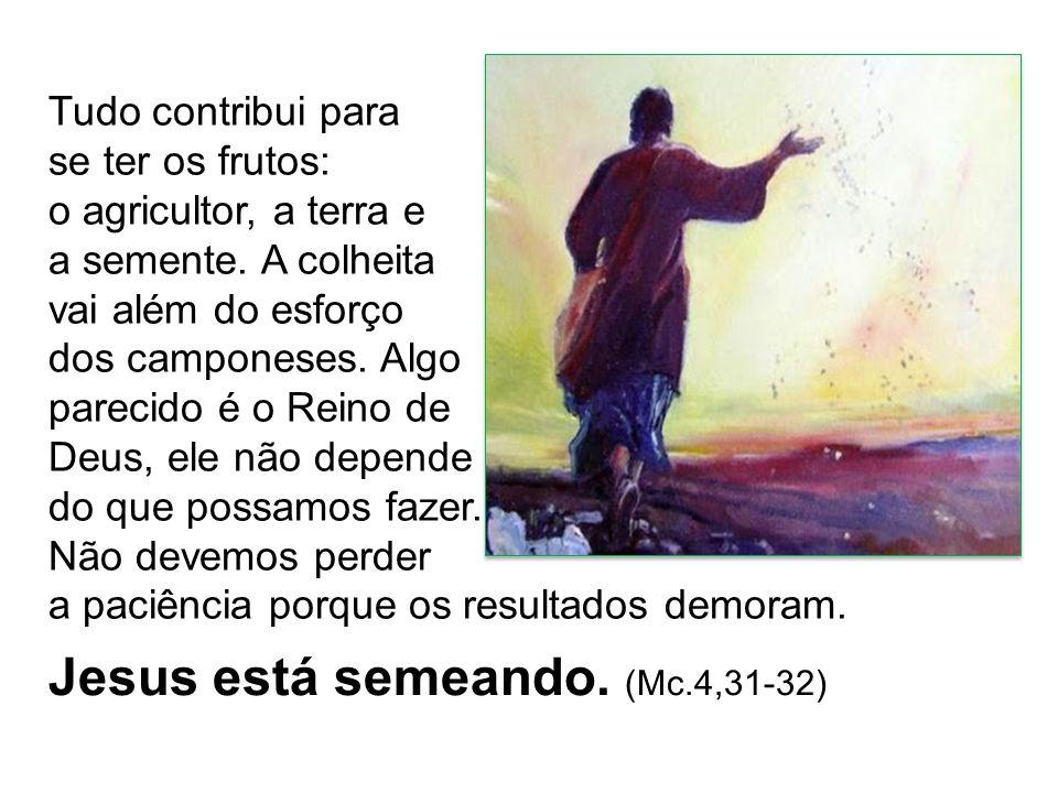 Jesus está semeando. (Mc.4,31-32)