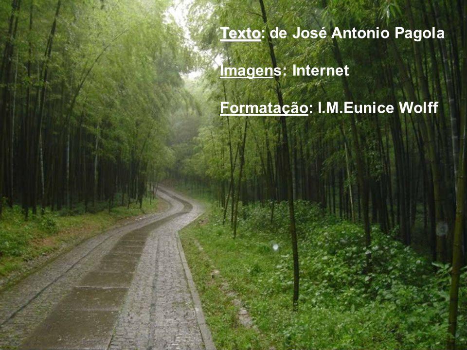 Texto: de José Antonio Pagola