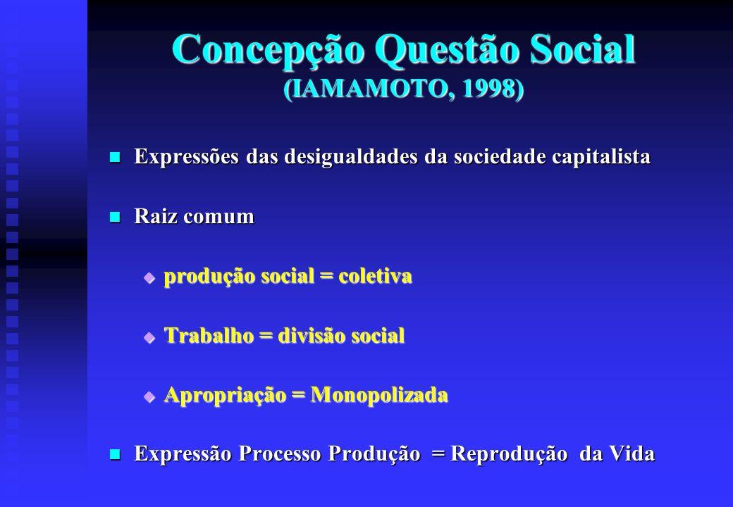 Concepção Questão Social (IAMAMOTO, 1998)