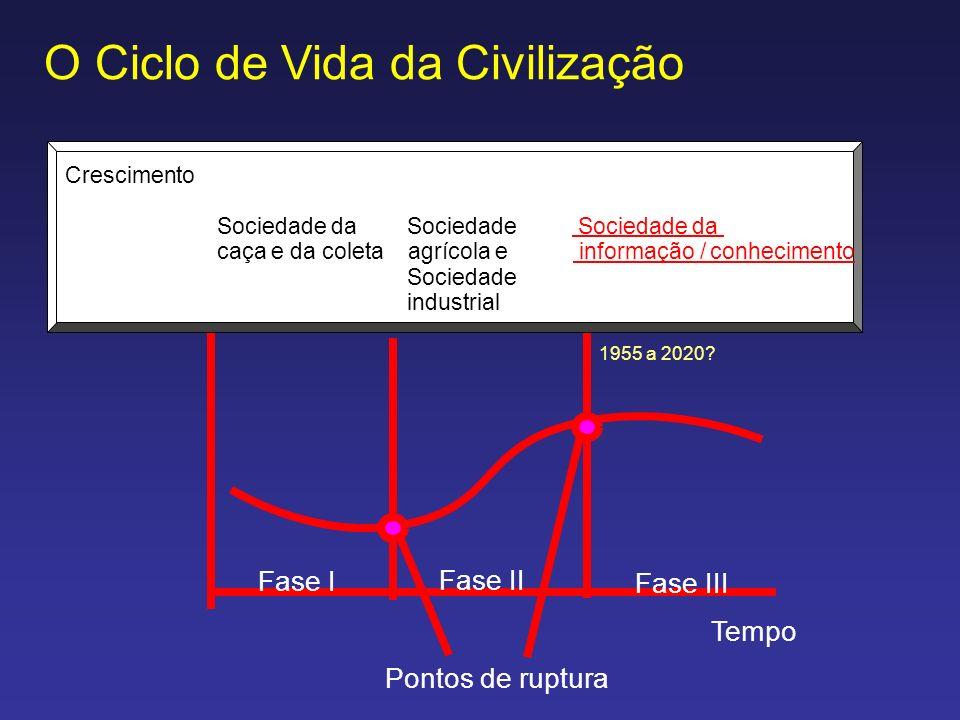 O Ciclo de Vida da Civilização