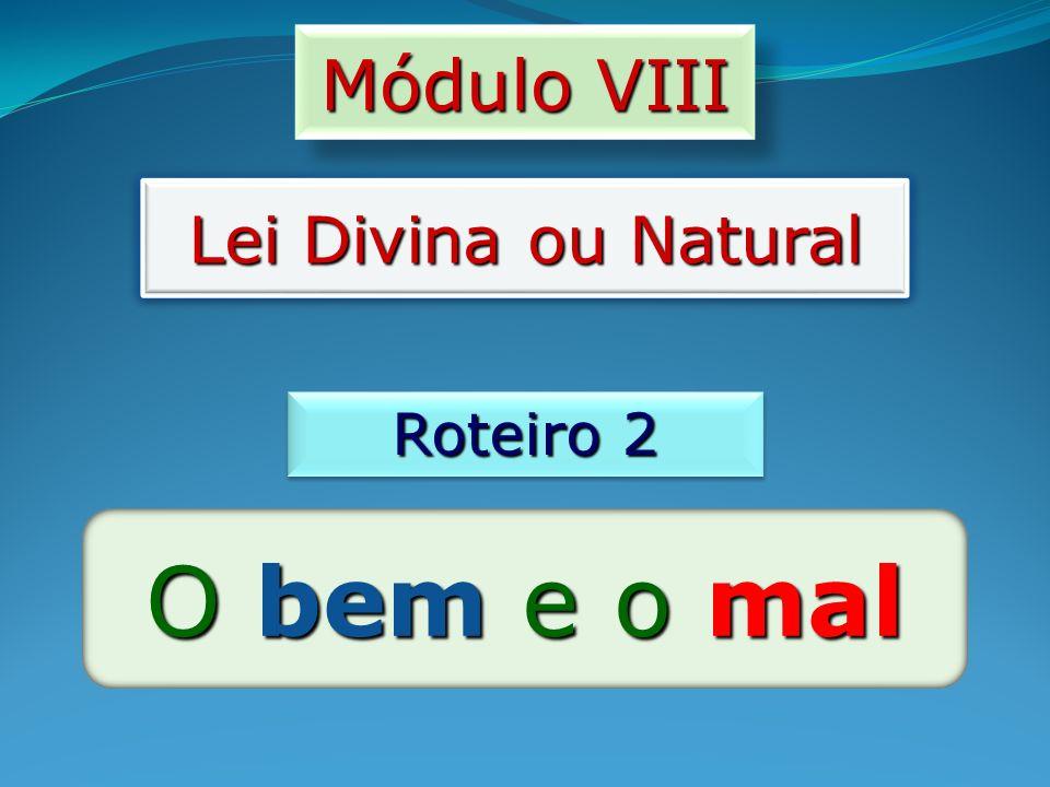 Módulo VIII Lei Divina ou Natural Roteiro 2 O bem e o mal