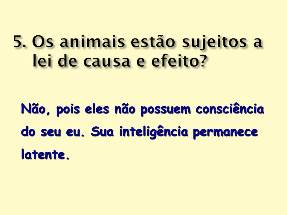 5. Os animais estão sujeitos a lei de causa e efeito