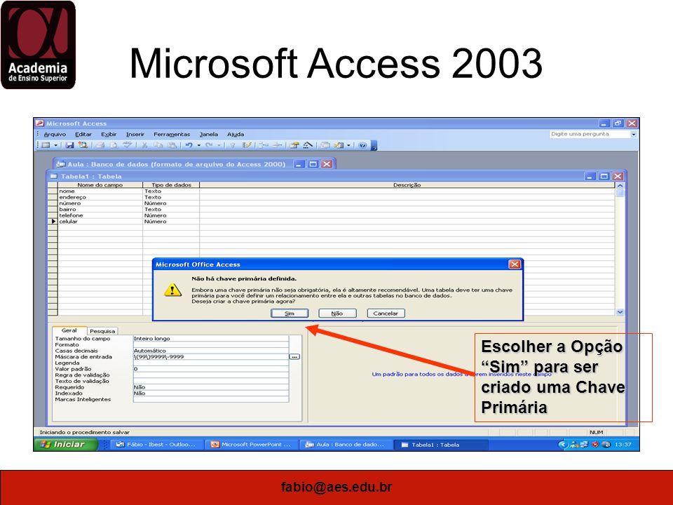 Microsoft Access 2003 Escolher a Opção Sim para ser criado uma Chave Primária fabio@aes.edu.br