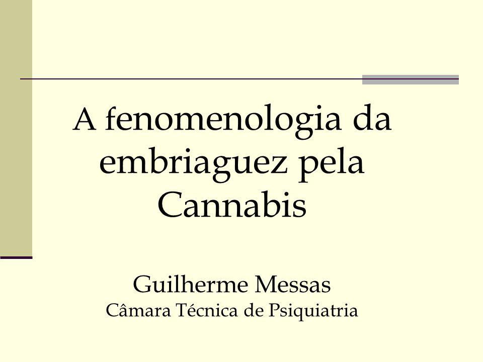 A fenomenologia da embriaguez pela Cannabis