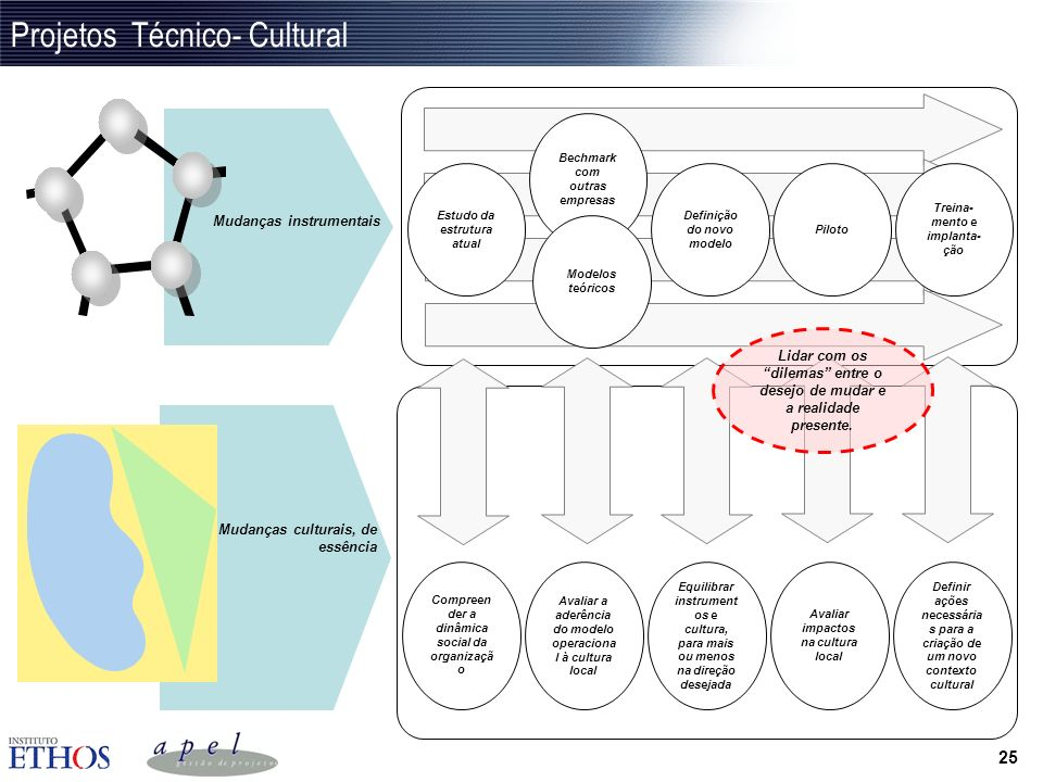 Projetos Técnico- Cultural