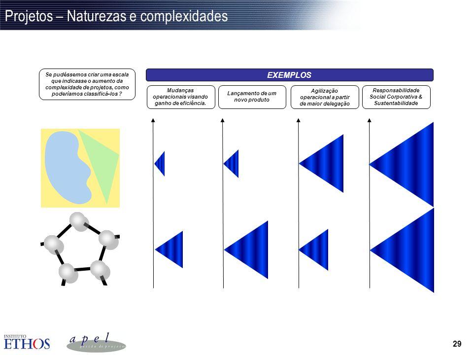 Projetos – Naturezas e complexidades