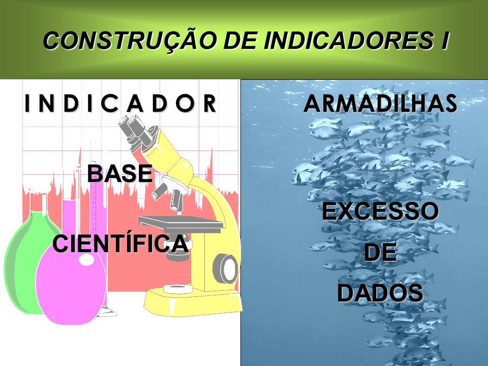 CONSTRUÇÃO DE INDICADORES I