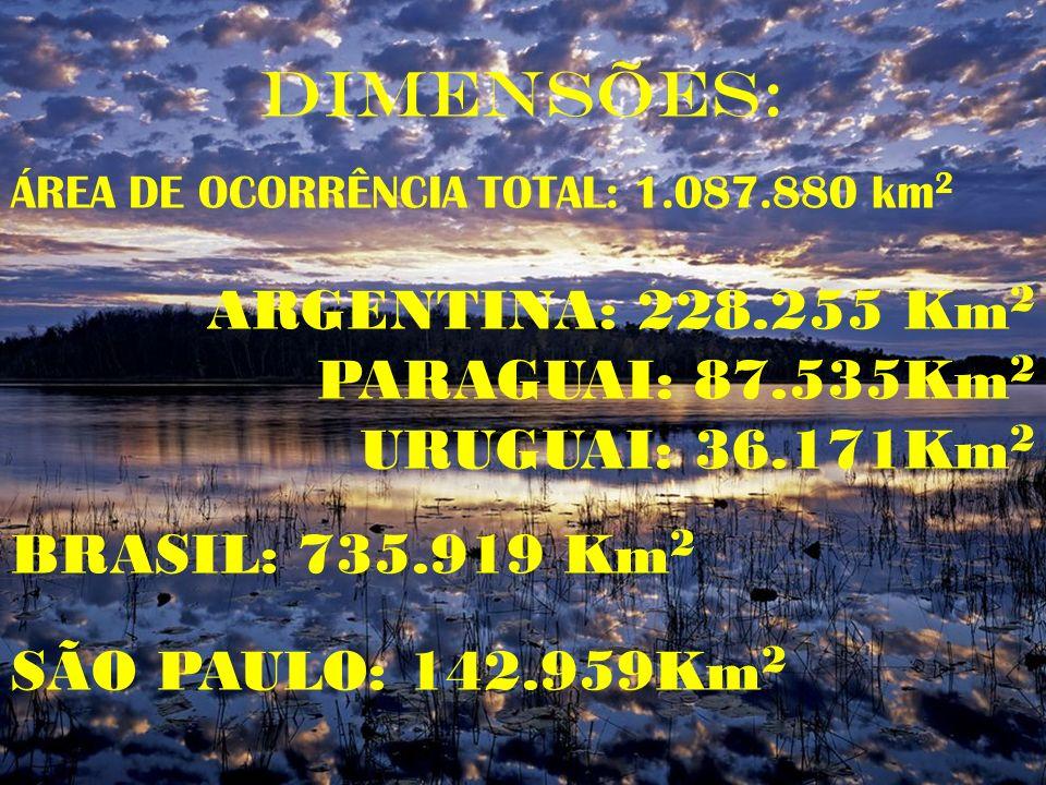 DIMENSÕES: ARGENTINA: 228.255 Km2 PARAGUAI: 87.535Km2