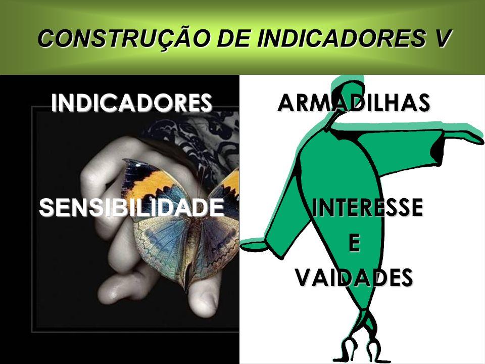 CONSTRUÇÃO DE INDICADORES V