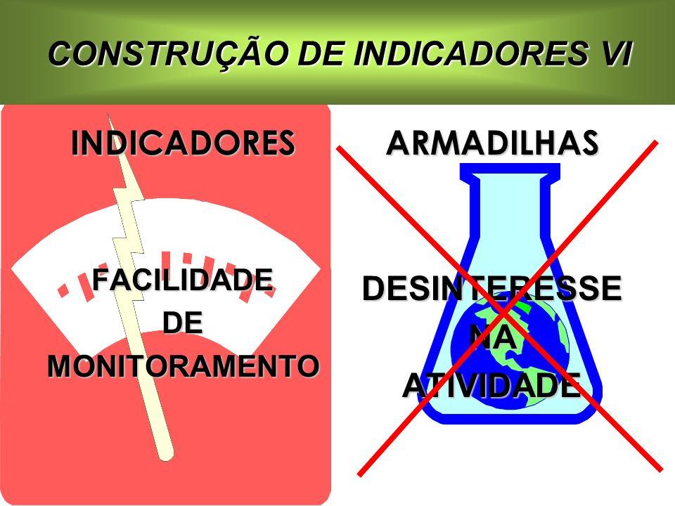 CONSTRUÇÃO DE INDICADORES VI