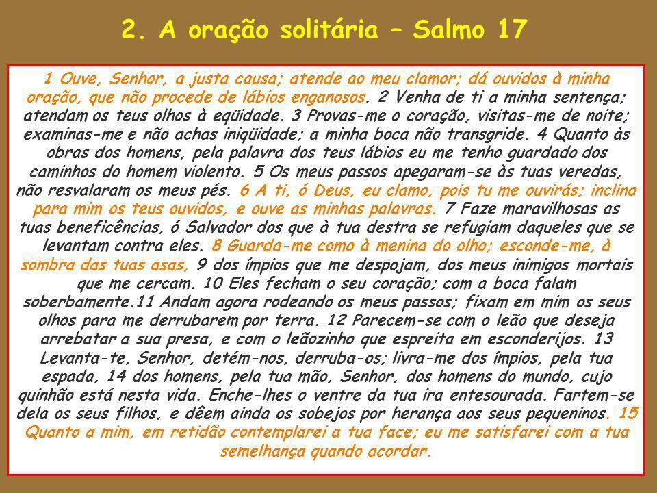 2. A oração solitária – Salmo 17