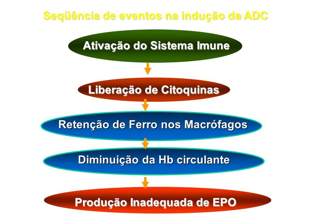 Seqüência de eventos na indução da ADC