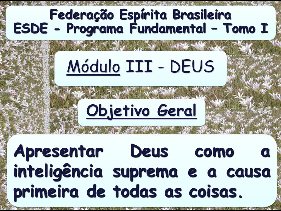 Federação Espírita Brasileira ESDE - Programa Fundamental – Tomo I