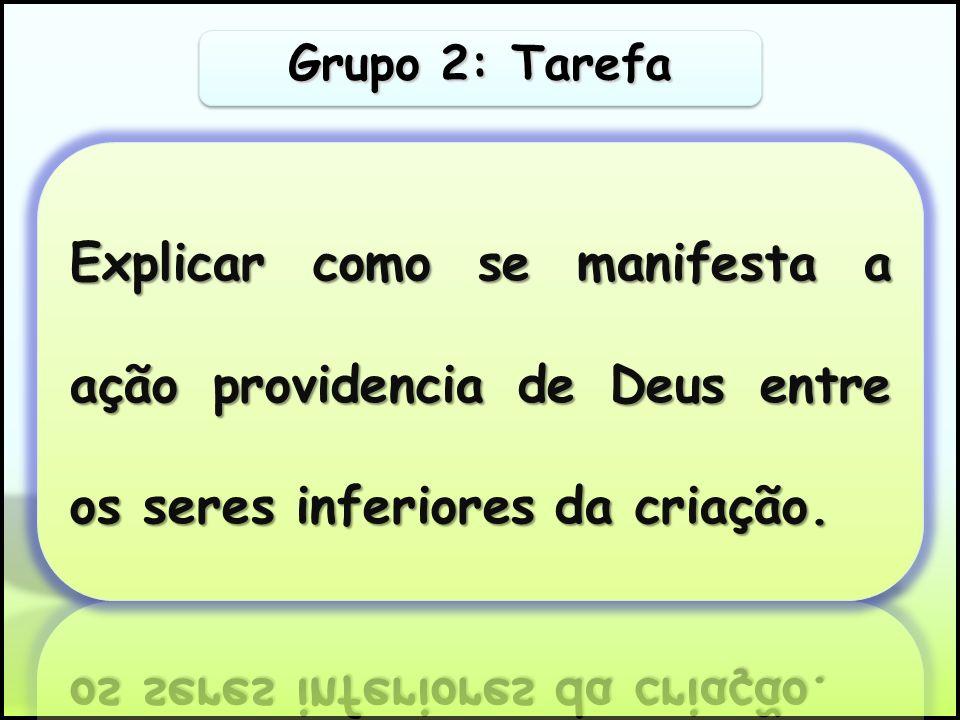 Grupo 2: Tarefa Explicar como se manifesta a ação providencia de Deus entre os seres inferiores da criação.