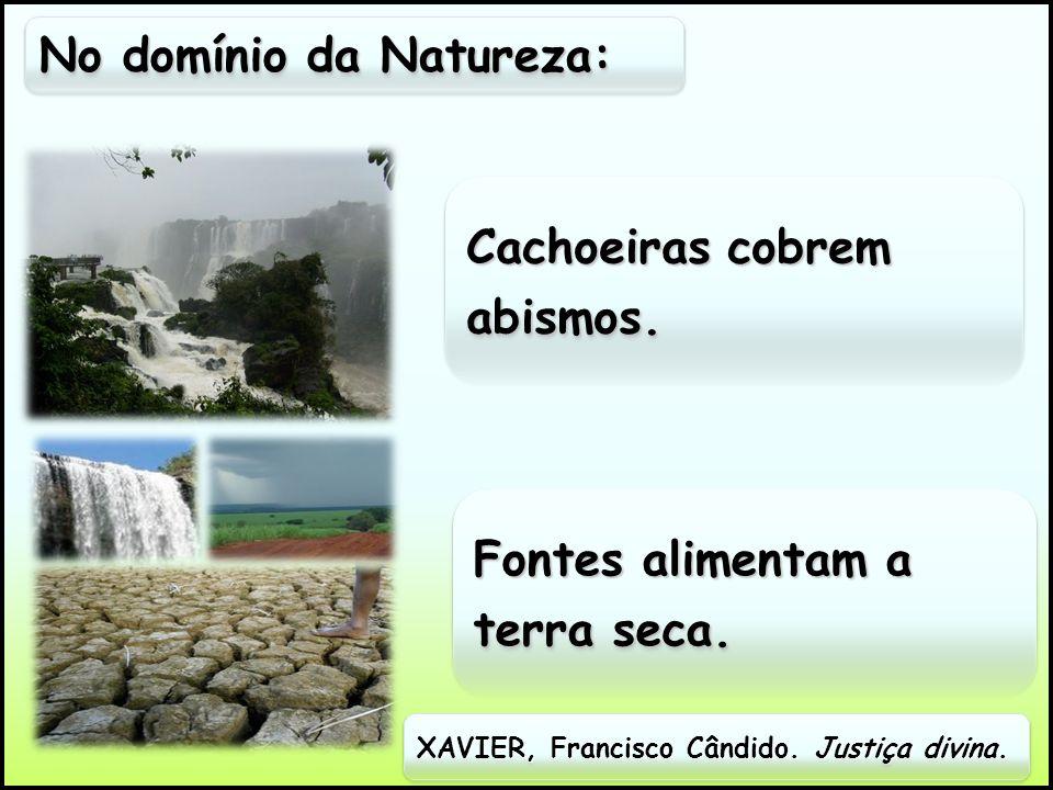No domínio da Natureza:
