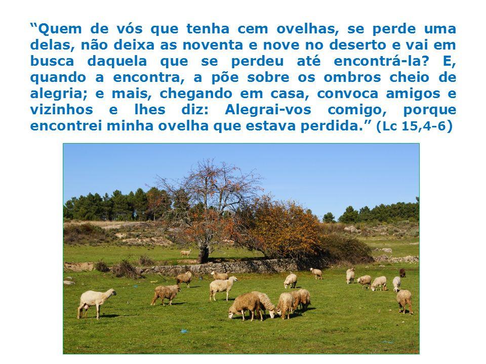 Quem de vós que tenha cem ovelhas, se perde uma delas, não deixa as noventa e nove no deserto e vai em busca daquela que se perdeu até encontrá-la.