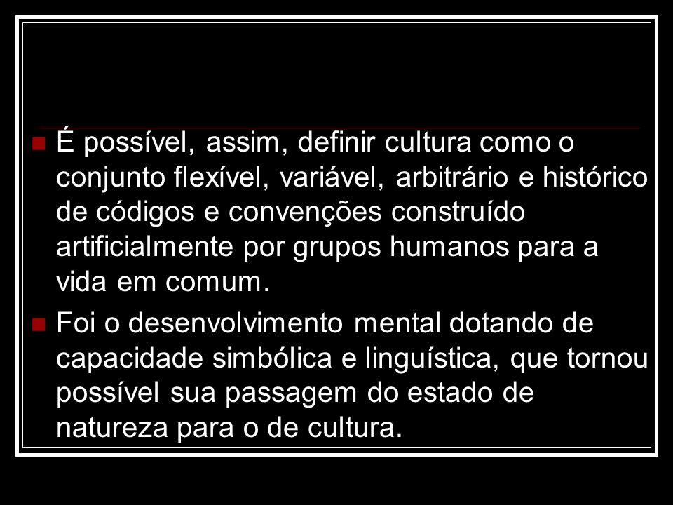 É possível, assim, definir cultura como o conjunto flexível, variável, arbitrário e histórico de códigos e convenções construído artificialmente por grupos humanos para a vida em comum.