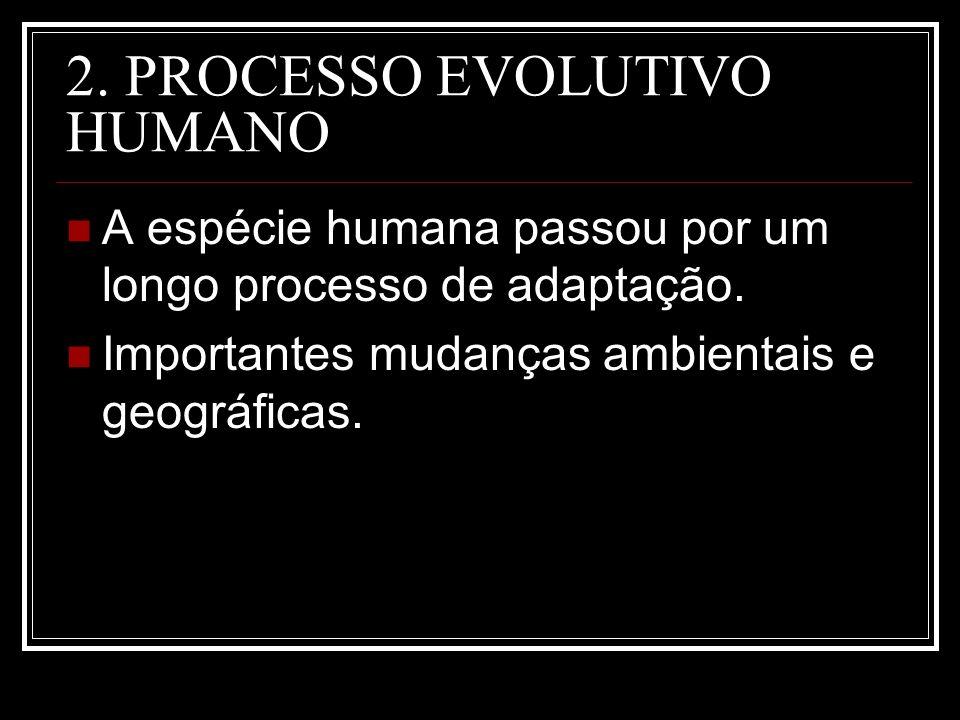 2. PROCESSO EVOLUTIVO HUMANO