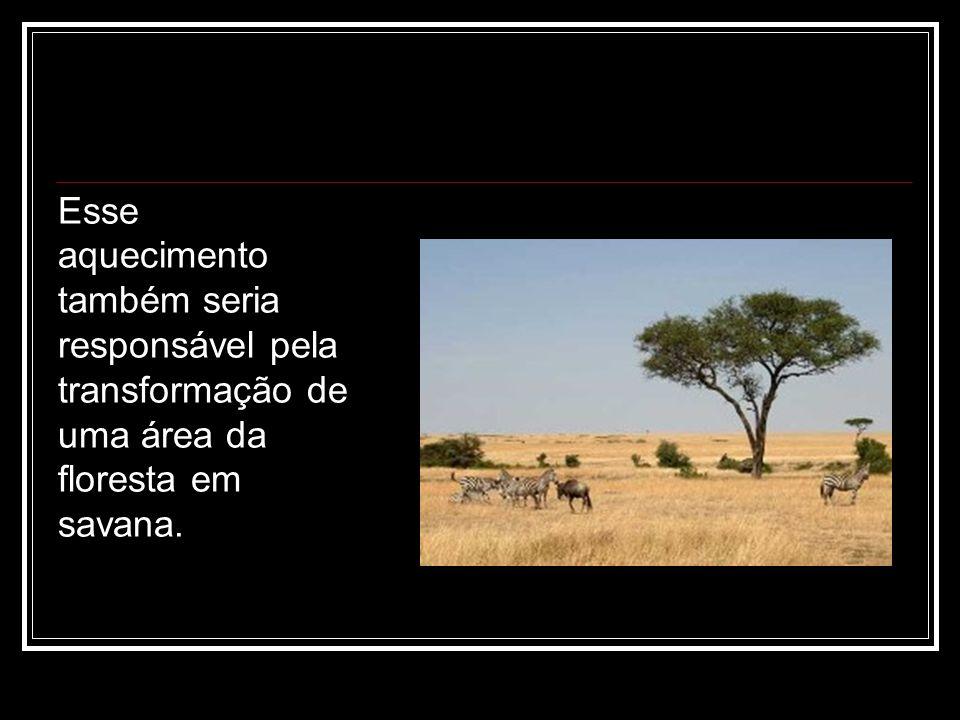 Esse aquecimento também seria responsável pela transformação de uma área da floresta em savana.