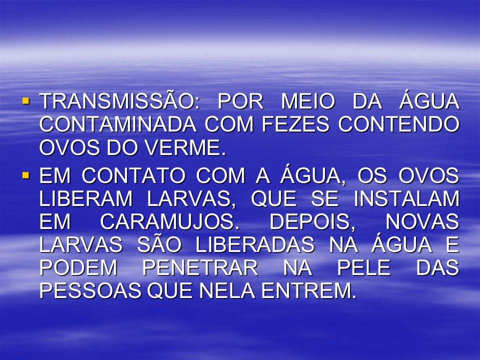 TRANSMISSÃO: POR MEIO DA ÁGUA CONTAMINADA COM FEZES CONTENDO OVOS DO VERME.