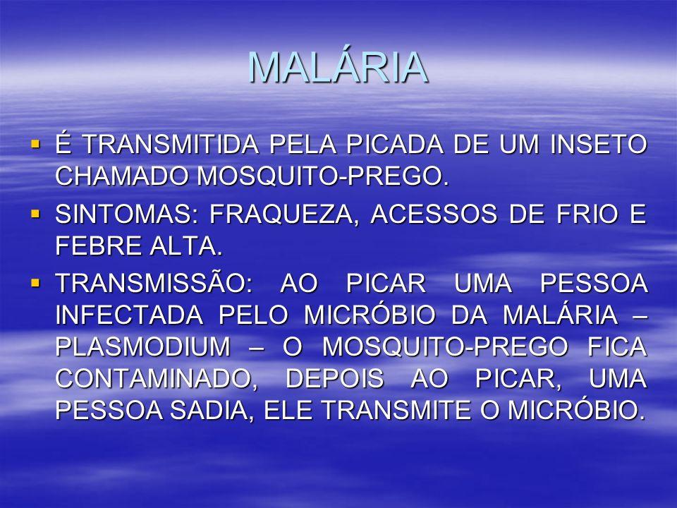 MALÁRIA É TRANSMITIDA PELA PICADA DE UM INSETO CHAMADO MOSQUITO-PREGO.