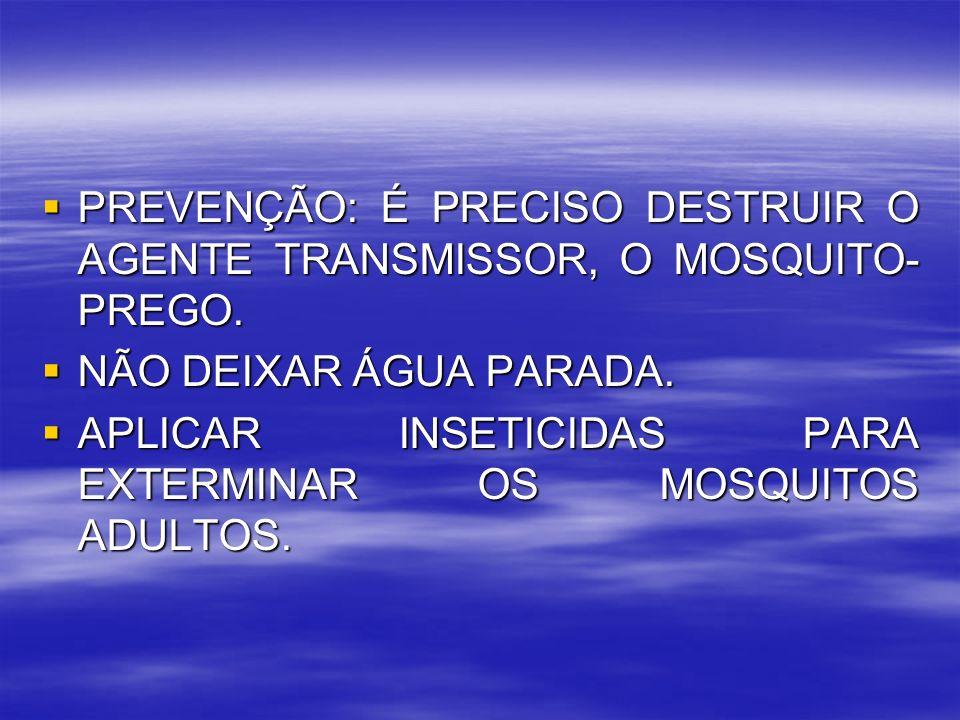 PREVENÇÃO: É PRECISO DESTRUIR O AGENTE TRANSMISSOR, O MOSQUITO-PREGO.