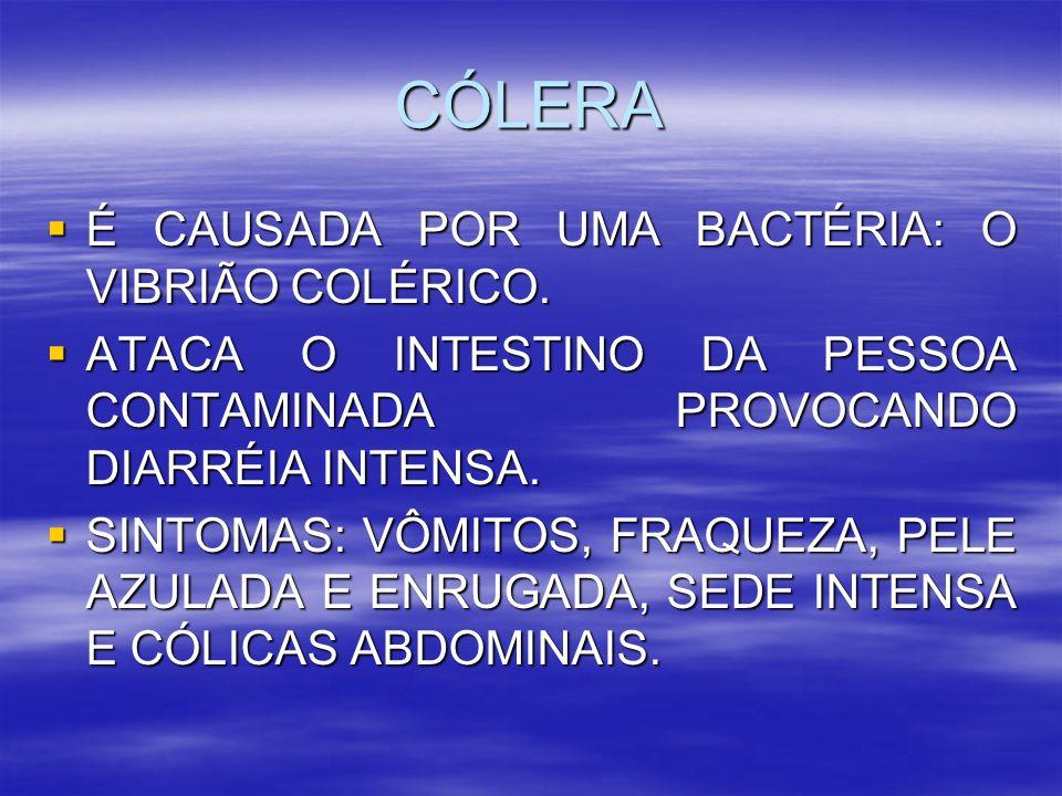 CÓLERA É CAUSADA POR UMA BACTÉRIA: O VIBRIÃO COLÉRICO.