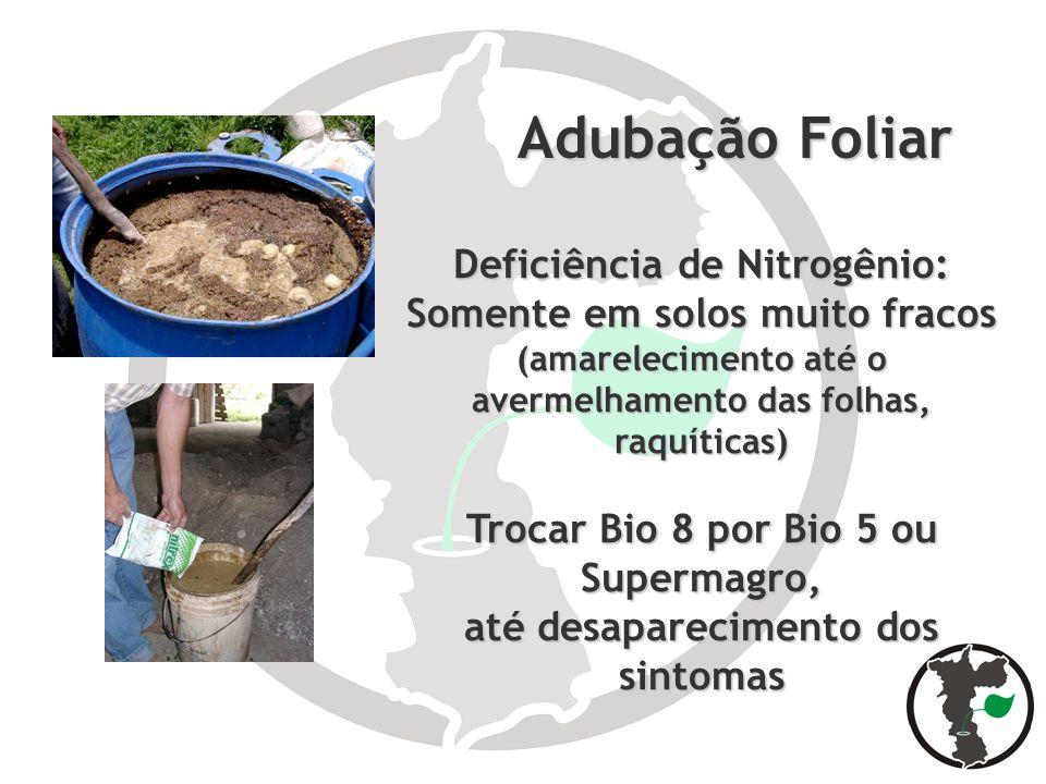 Adubação Foliar Deficiência de Nitrogênio: