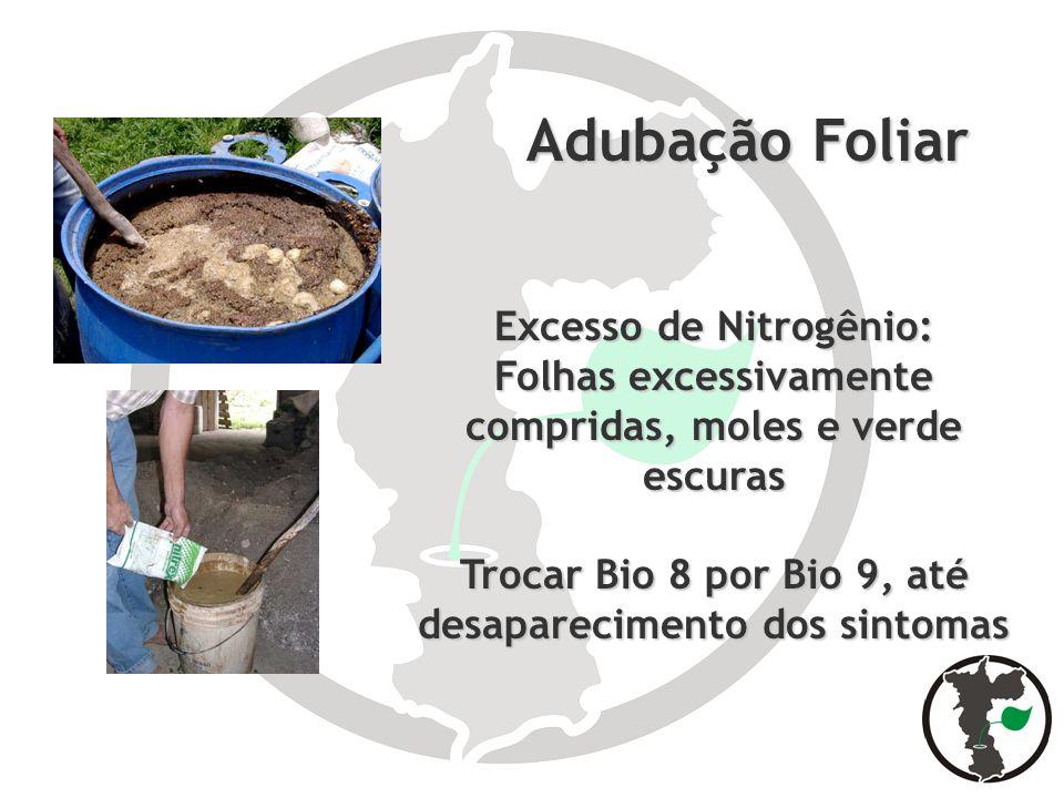 Adubação Foliar Excesso de Nitrogênio: