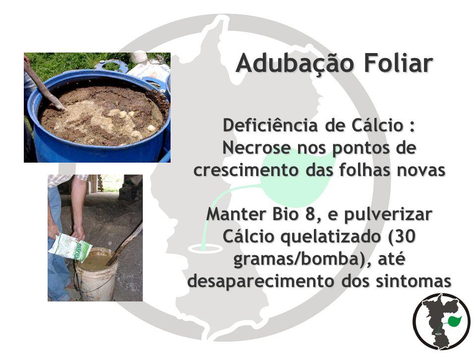 Adubação Foliar Deficiência de Cálcio :