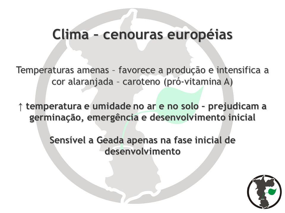 Clima – cenouras européias