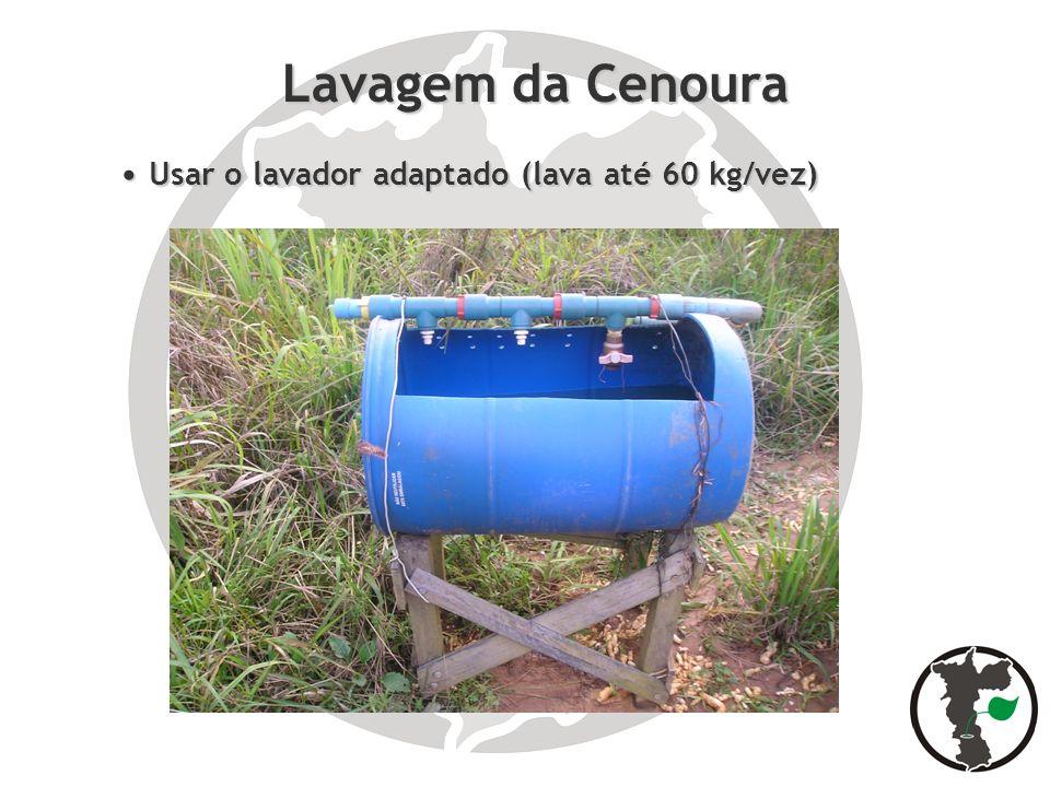 Lavagem da Cenoura Usar o lavador adaptado (lava até 60 kg/vez)