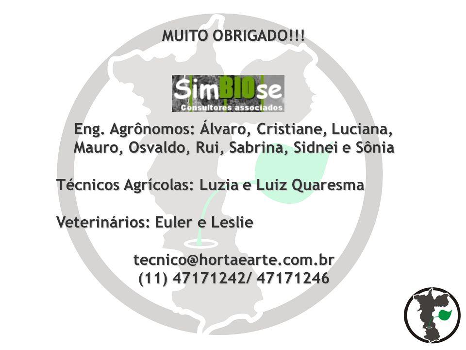 MUITO OBRIGADO!!!Eng. Agrônomos: Álvaro, Cristiane, Luciana, Mauro, Osvaldo, Rui, Sabrina, Sidnei e Sônia.