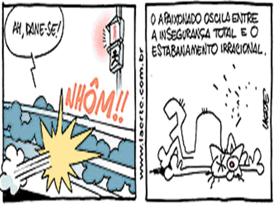 IBCU 2005©