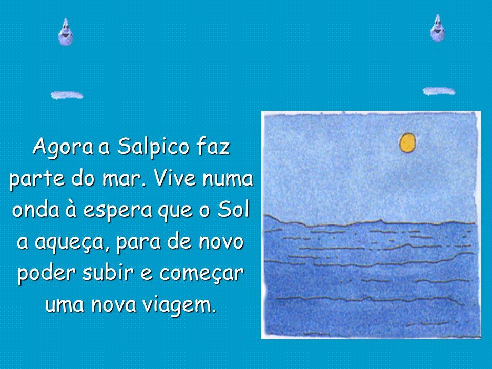 Agora a Salpico faz parte do mar. Vive numa. onda à espera que o Sol. a aqueça, para de novo. poder subir e começar.