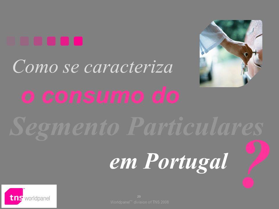 Como se caracteriza o consumo do Segmento Particulares em Portugal