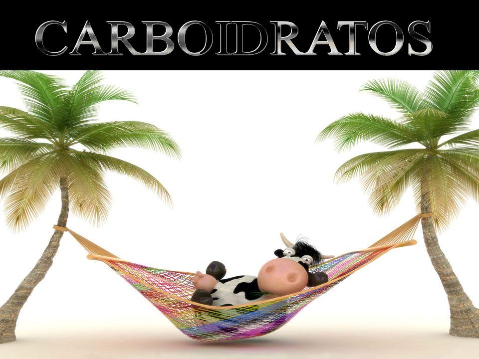 CARBOIDRATOS Maltose: Dissacarídeo (açúcar da cerveja) Galactose + Glicose. Lactose: Dissacarídeo (açúcar do leite) Glicose + Glicose.