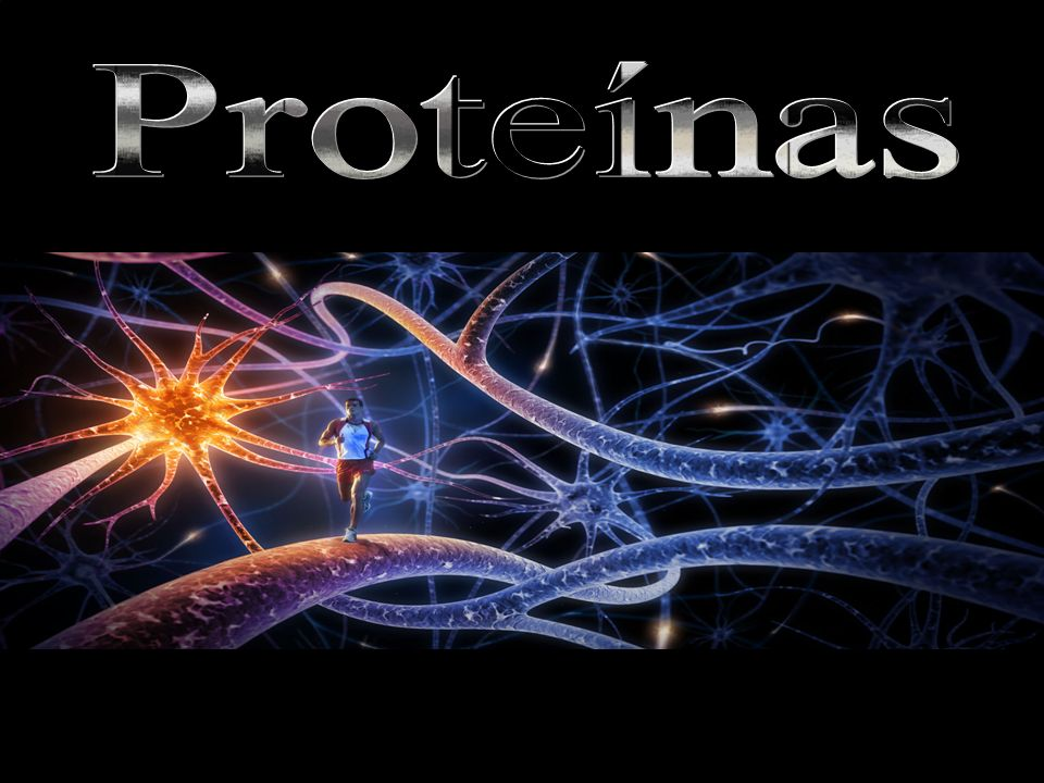 Proteínas A maioria das proteínas apresenta entre 100 e 10.000 unidades de α-aminoácidos.