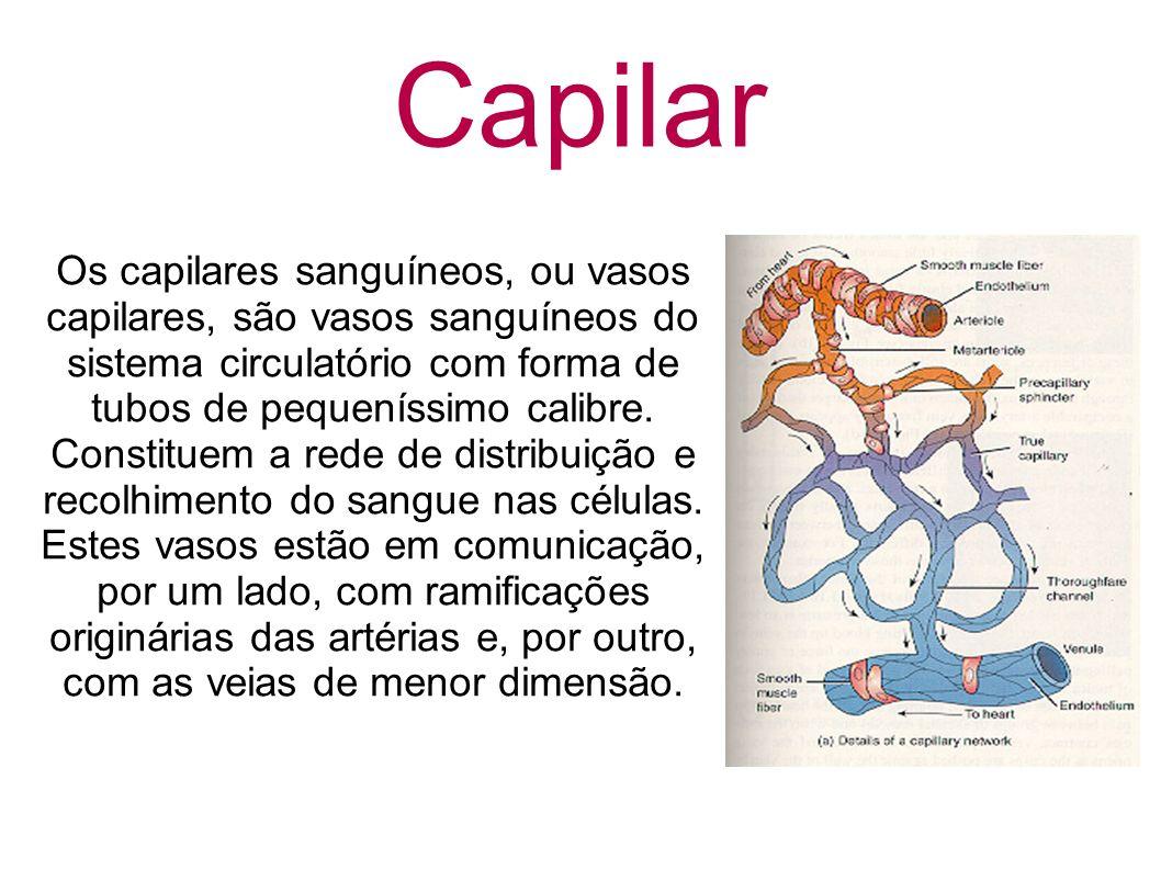 Capilar