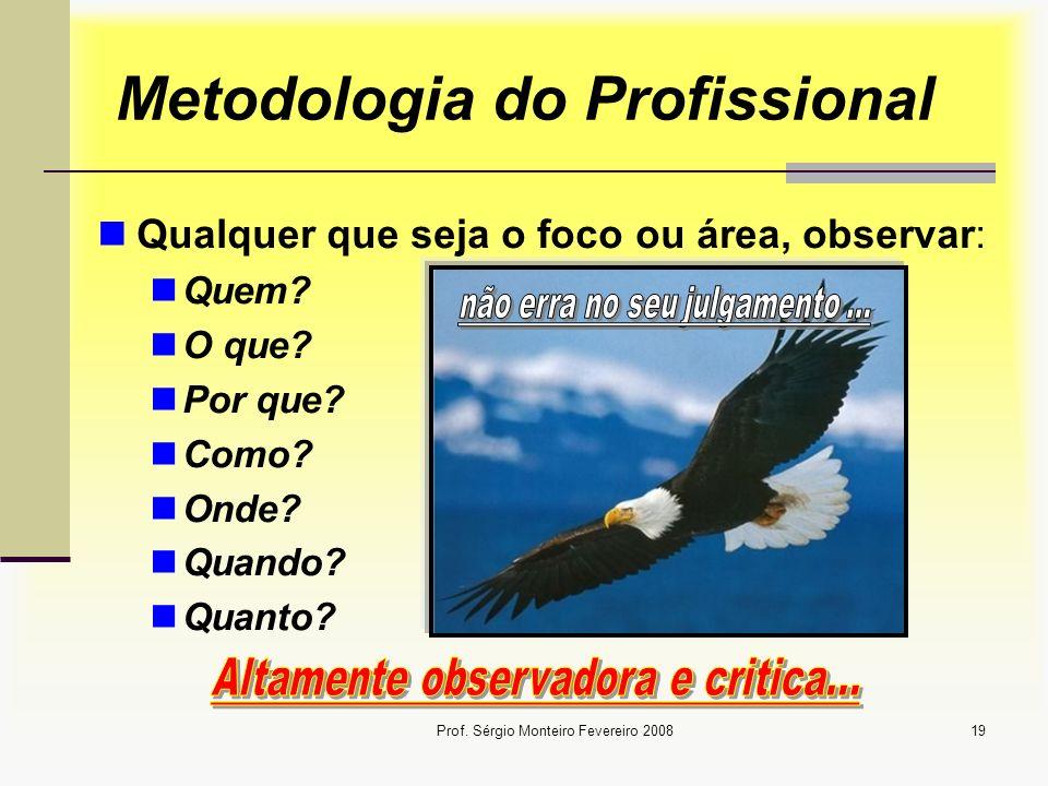 Metodologia do Profissional
