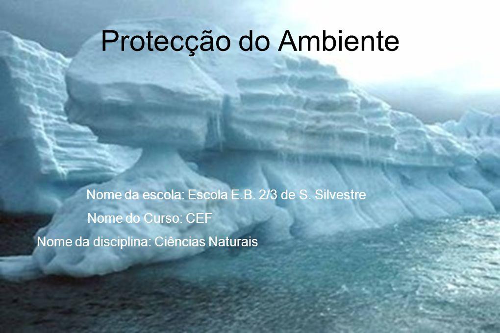 Protecção do Ambiente Nome do Curso: CEF