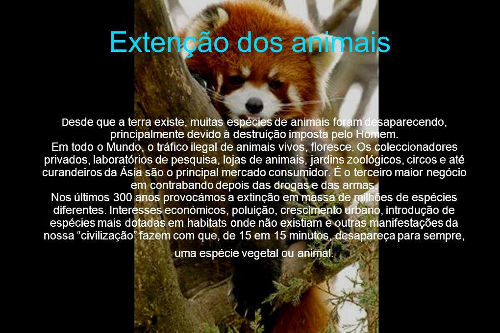 Extenção dos animais