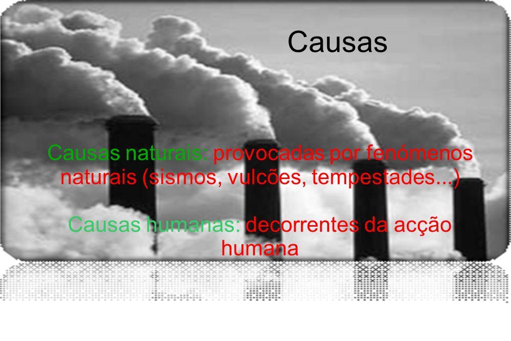 Causas humanas: decorrentes da acção humana
