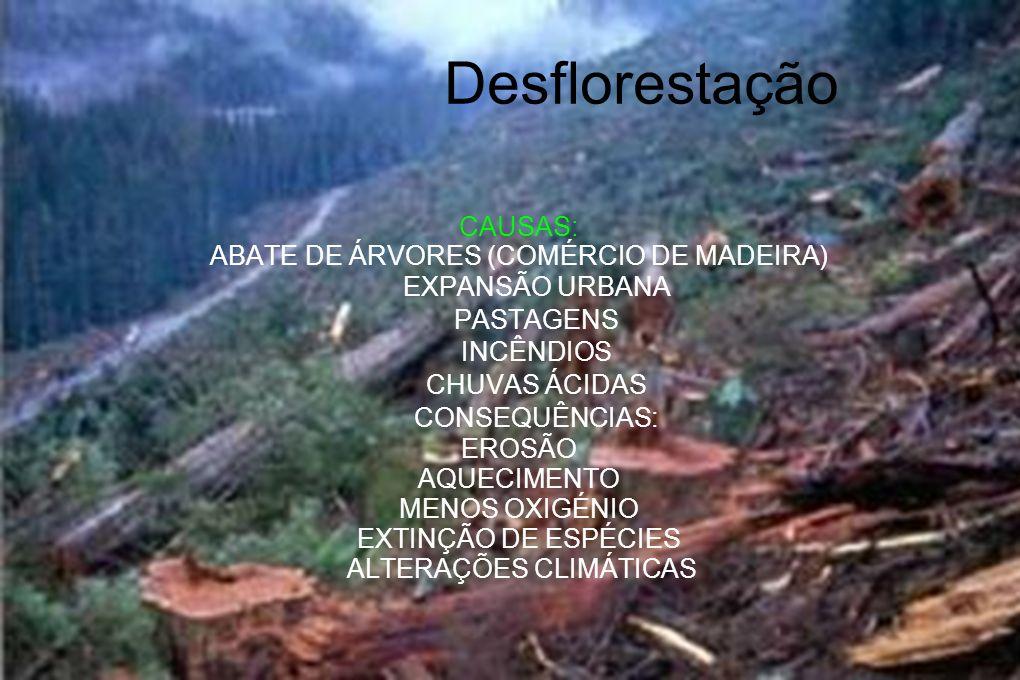 Desflorestação CAUSAS: ABATE DE ÁRVORES (COMÉRCIO DE MADEIRA)