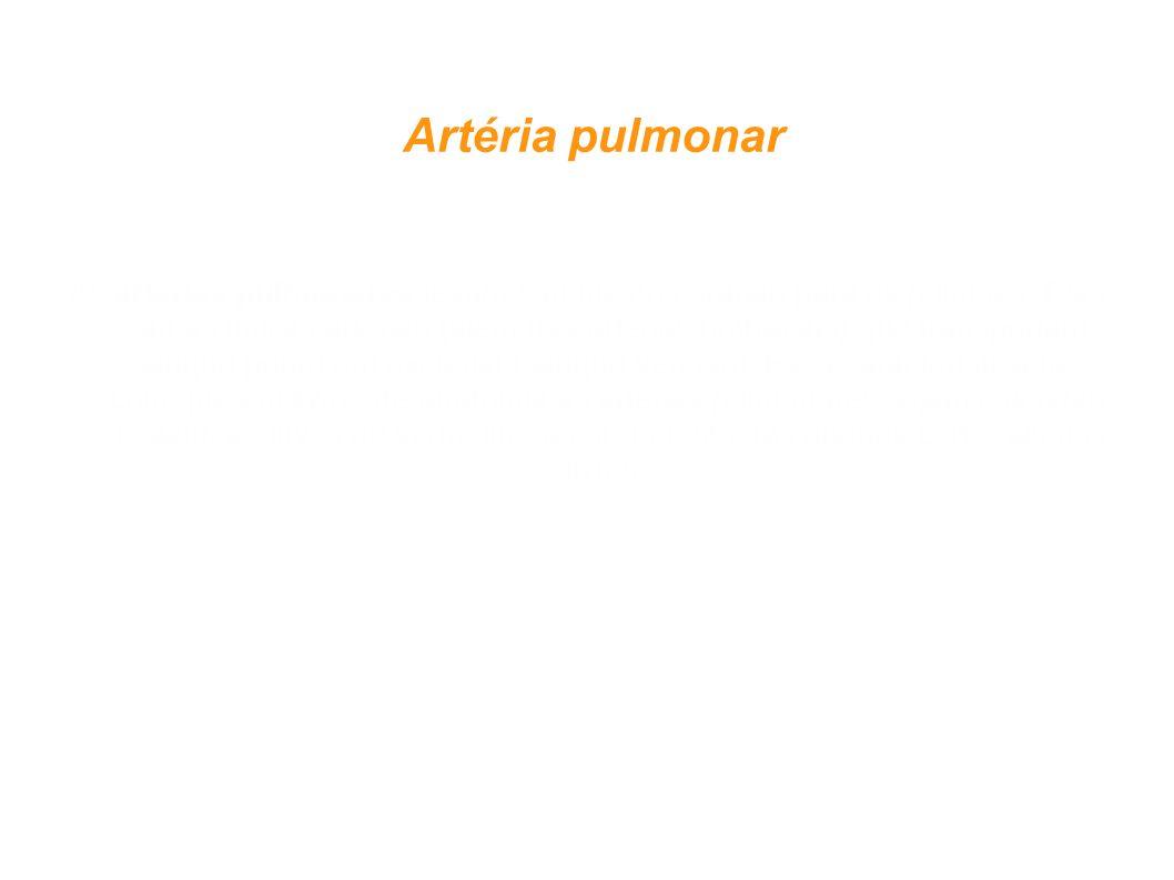 Artéria pulmonar
