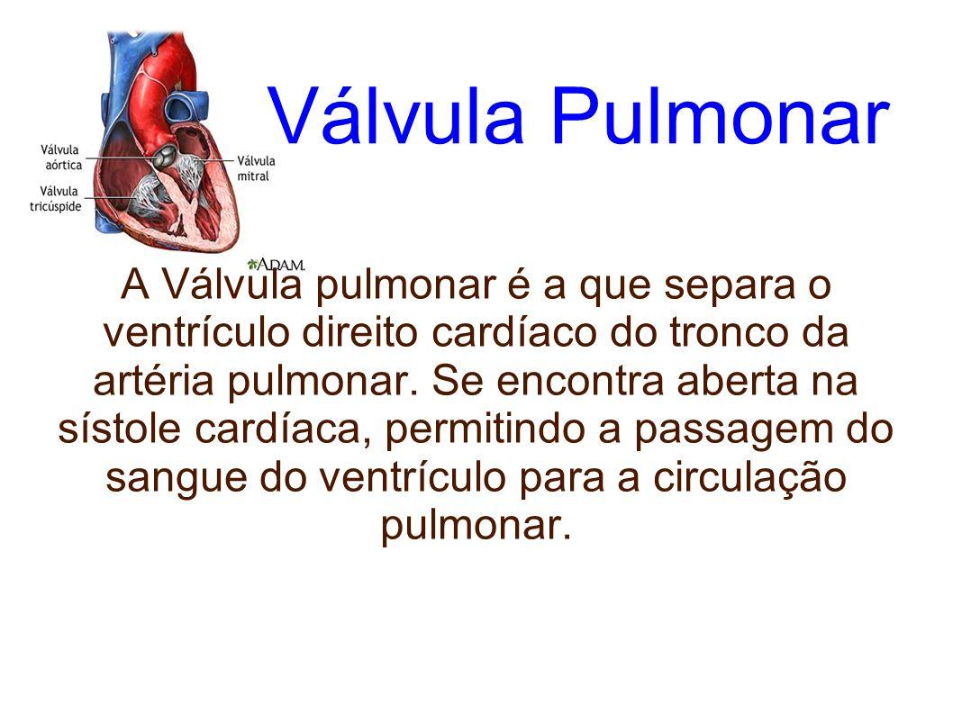 Válvula Pulmonar