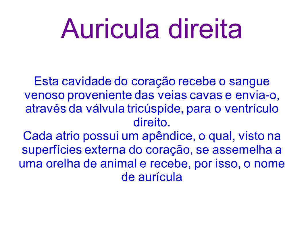 Auricula direita