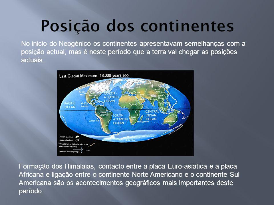Posição dos continentes
