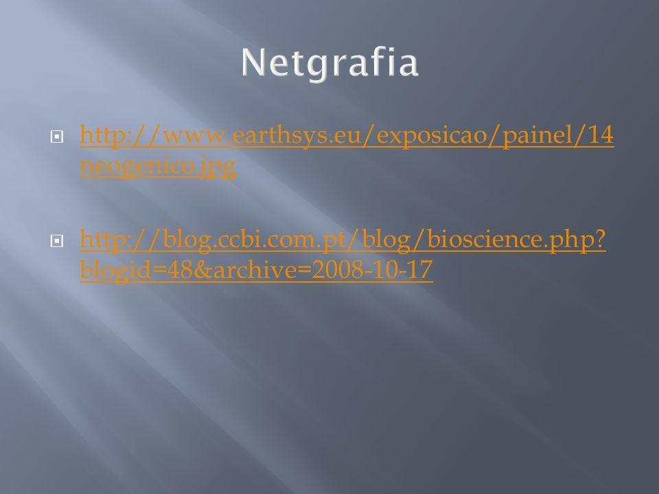 Netgrafia http://www.earthsys.eu/exposicao/painel/14neogenico.jpg